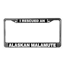 I Rescued an Alaskan Malamute