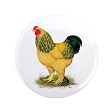 "Brahma Buff Rooster 3.5"" Button (100 pack)"