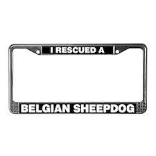 I Rescued a Belgian Sheepdog