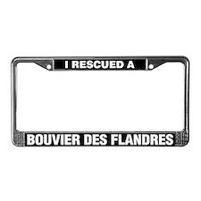 I Rescued a Bouvier des Flandres