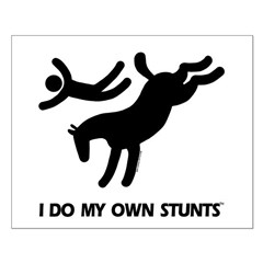Horse I Do My Own Stunts Posters