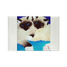 Birman Kittens Rectangle Magnet