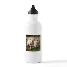 Little Family Water Bottle
