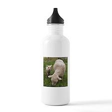 Ewe & Baby Water Bottle