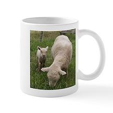 Ewe & Baby Mug