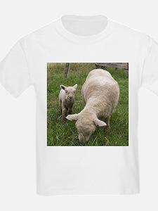 Ewe & Baby T-Shirt