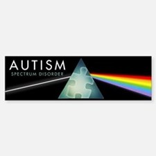 Autism Spectrum Car Car Sticker