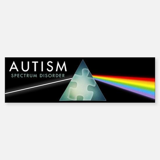 Autism Spectrum Sticker (Bumper)