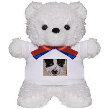 Extreme Close Up! Teddy Bear