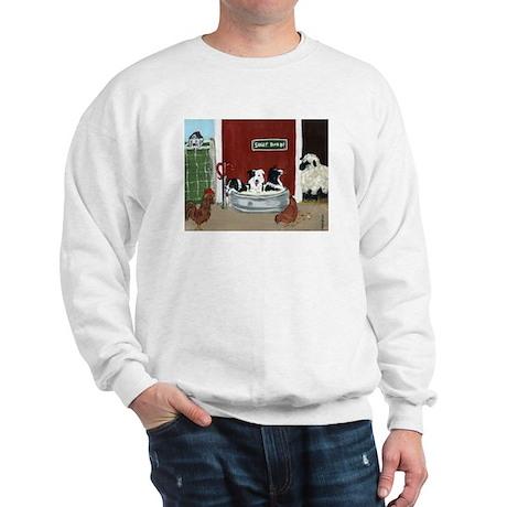 Collie Pool Party Sweatshirt