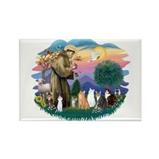 St Francis (ff)-7 Cats Rectangle Magnet