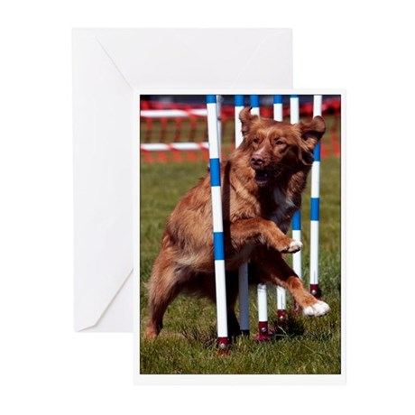 Agility Toller Greeting Cards