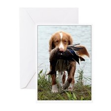 Toller with Duck Greeting Cards