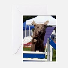 Jumping Weimaraner Greeting Cards