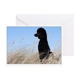 Poodles Greeting Cards (10 Pack)