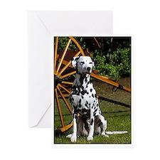 Sitting Dalmatian & Cart Greeting Cards