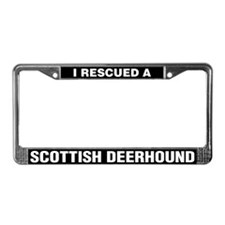 I Rescued a Scottish Deerhound