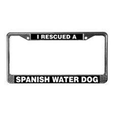I Rescued a Spanish Water Dog