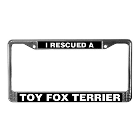I Rescued a Toy Fox Terrier