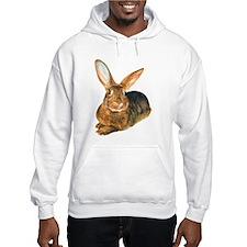 Basil Hoodie Sweatshirt
