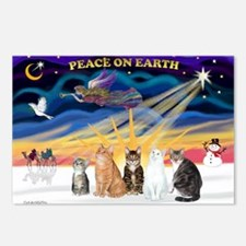 X-Sunrise-5 (Am.SH) Cats Postcards (Package of 8)