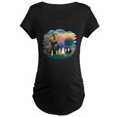 St Francis (ff)-7 Cats T-Shirt