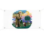 St. Fran (ff) - Maine Coon (#9) Banner
