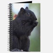 Black squirrel Journal