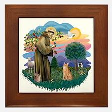 St. Fran. (ff) - Orange Tabby Framed Tile