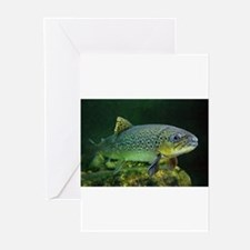 BROWN TROUT s Greeting Cards