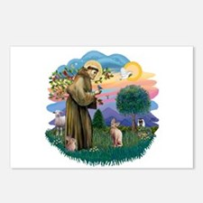 St Francis - Sphynx (fawn) Postcards (Package of 8