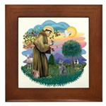 St Fran (ff) - Russian Blue (#2) Framed Tile