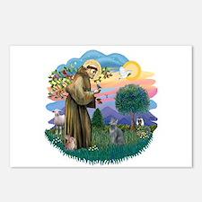 St Fran (ff) - Russian Blue (#2) Postcards (Packag