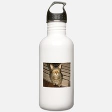 Funny Lolcat Water Bottle