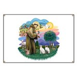 St Fran (ff) - 2 Siamese (A) Banner