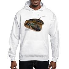 American Lobster Hoodie