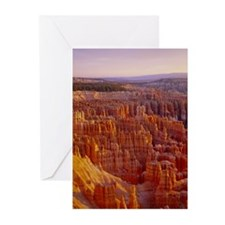 Cute Bryce Greeting Cards (Pk of 10)