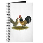 Dutch Blue Quail Chickens Journal