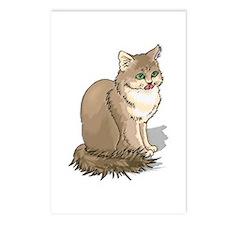 Ragdoll Cat Portrait Postcards (Package of 8)
