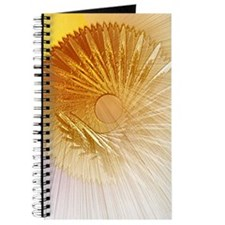 Sunshield Journal