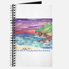 John Muir Beach, CA Monterey Journal