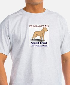 Take a Stand Uncropped Ash Grey T-Shirt