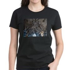DSC00416 T-Shirt