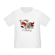 O'Flaherty Family Coat of Arms T