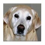 CaninenCancerAwareness Tile Coaster