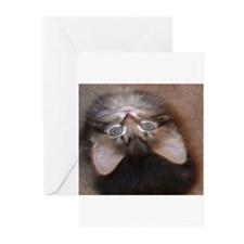 Hello. Greeting Cards (Pk of 10)