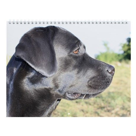 "Labrador Retriever Wall Calendar ""C"""
