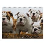Bulldogsworld 11th Anniversary Wall Calendar