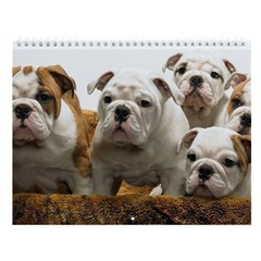 Bulldogsworld 11th Anniversary Wall Calendar