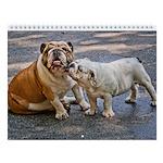 "Bulldog Wall Calendar ""H"""